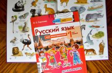 Русский язык для детей. Памятка